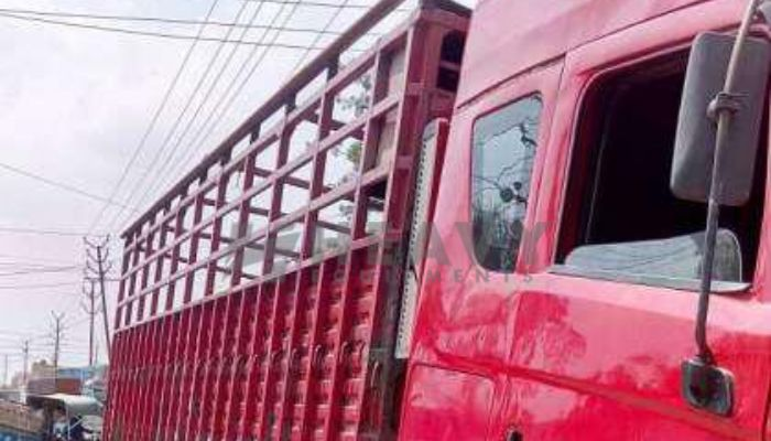 rent mahindra trailers in ahmedabad gujarat trailer tractor truck rent in vatva he 2015 250 heavyequipments_1518844231.png